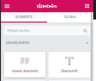 Elementor Elemente - Formular im Artikel